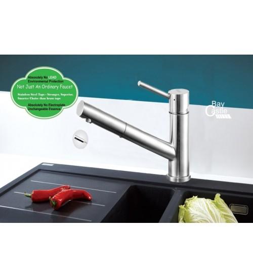 Davinport- Kitchen faucet
